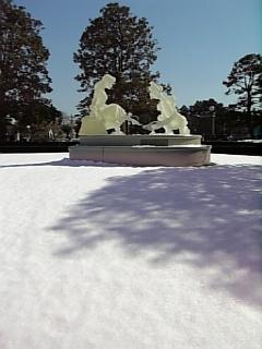 残雪のランド
